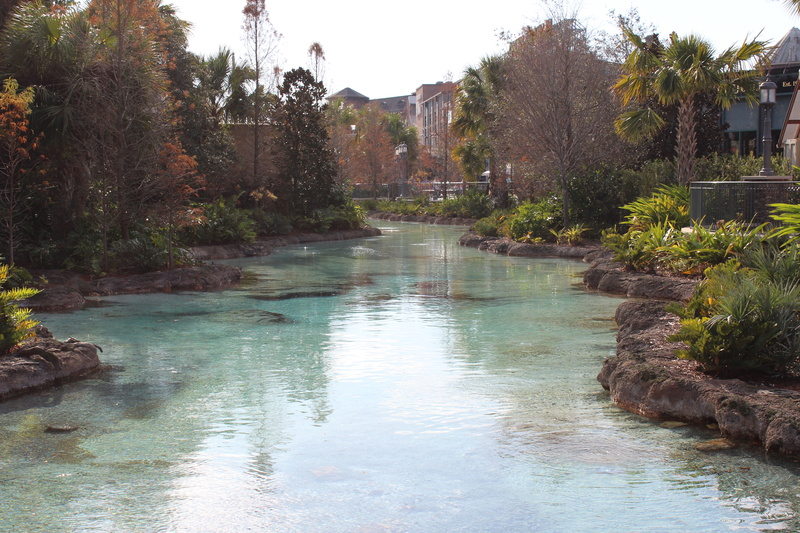 Mariage thème Disney + Voyage de Noces WDW + USO + IOA + Keys + Everglades + Miami - Page 3 Img_1630