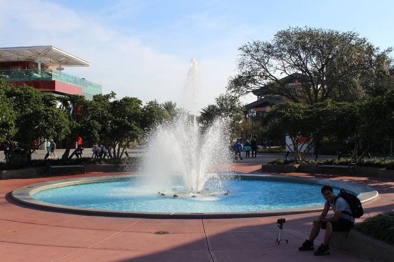 Mariage thème Disney + Voyage de Noces WDW + USO + IOA + Keys + Everglades + Miami - Page 3 Img_1635