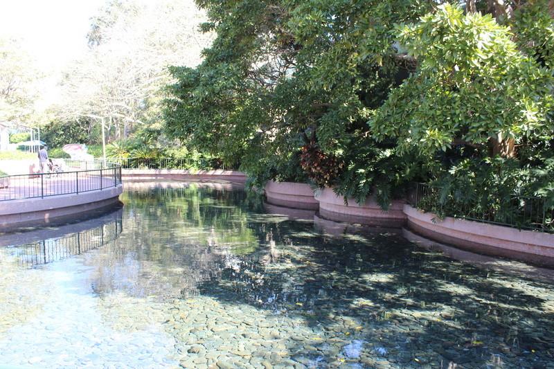 Mariage thème Disney + Voyage de Noces WDW + USO + IOA + Keys + Everglades + Miami - Page 3 Img_1734