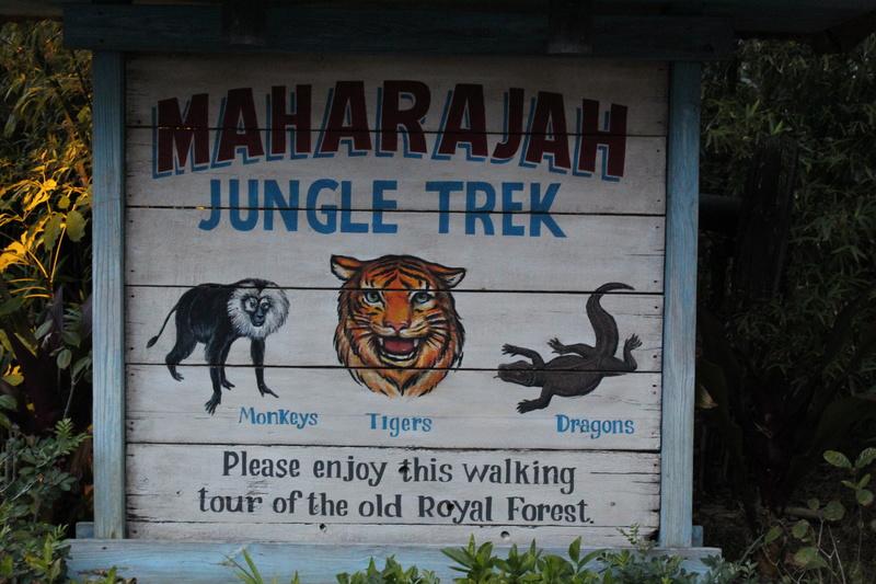 Mariage thème Disney + Voyage de Noces WDW + USO + IOA + Keys + Everglades + Miami - Page 4 Img_2133