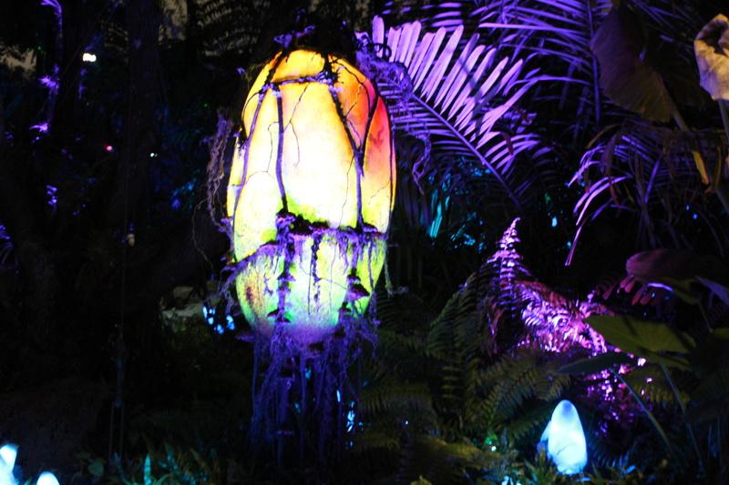 Mariage thème Disney + Voyage de Noces WDW + USO + IOA + Keys + Everglades + Miami - Page 4 Img_2148