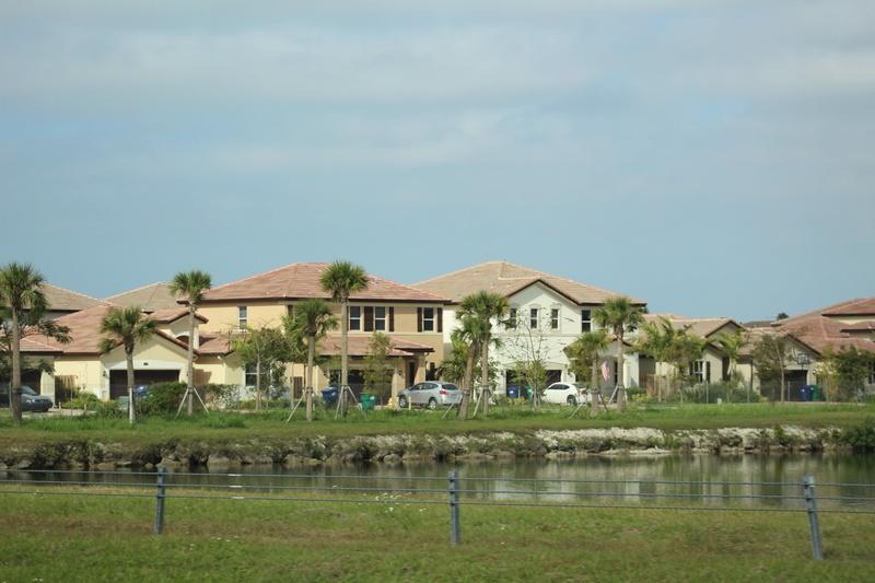 Mariage thème Disney + Voyage de Noces WDW + USO + IOA + Keys + Everglades + Miami - Page 5 Img_2625