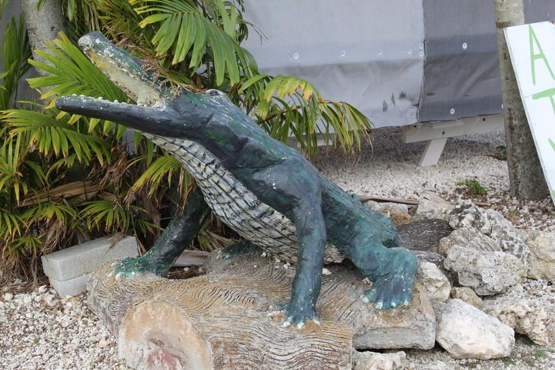 Mariage thème Disney + Voyage de Noces WDW + USO + IOA + Keys + Everglades + Miami - Page 5 Img_2716