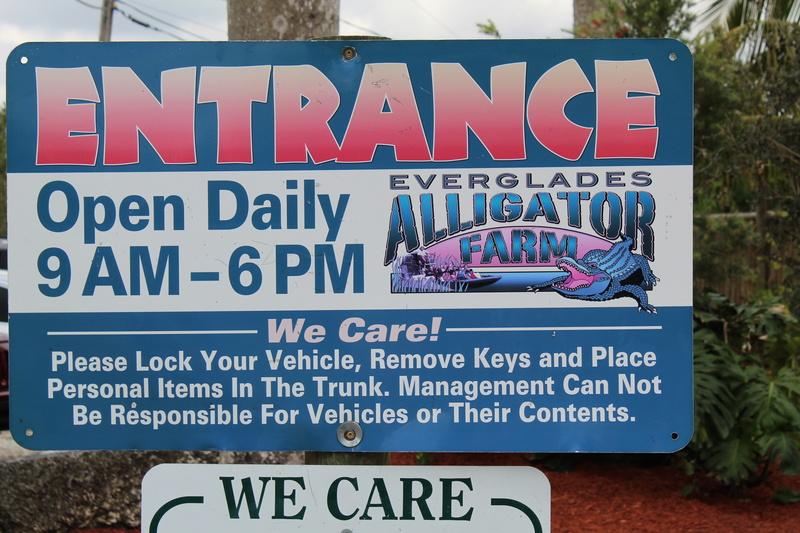 Mariage thème Disney + Voyage de Noces WDW + USO + IOA + Keys + Everglades + Miami - Page 5 Img_2724