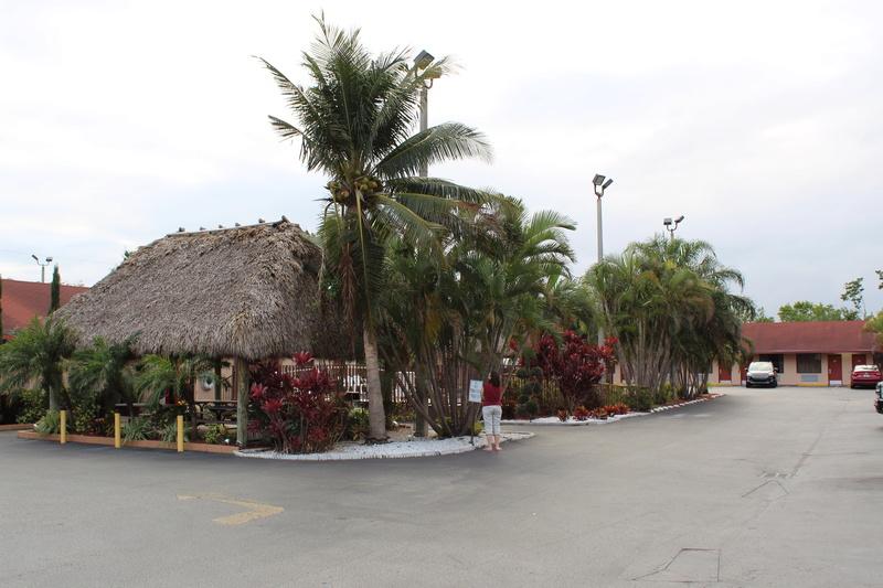 Mariage thème Disney + Voyage de Noces WDW + USO + IOA + Keys + Everglades + Miami - Page 5 Img_2816