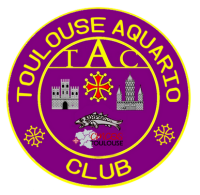 [31] Toulouse Aquario Club - TAC  Maquet10