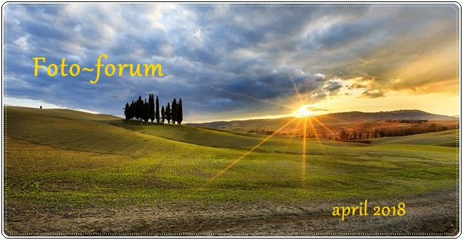 Foto-forum u slici - Page 28 32070010