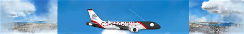 Airlines Painter. Captu125