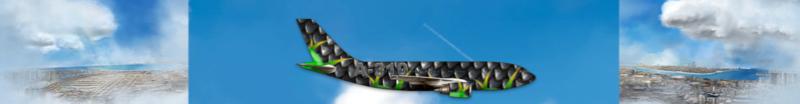 Airlines Painter. Captu156