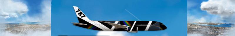 Airlines Painter. Captu165