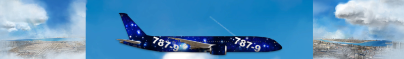 Airlines Painter. Captu166