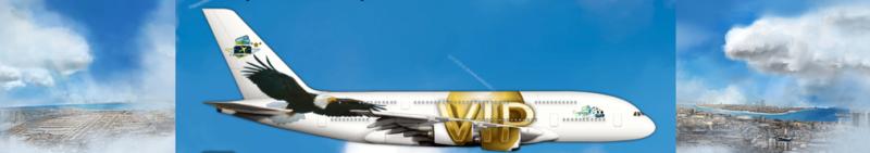 Airlines Painter. Captu169