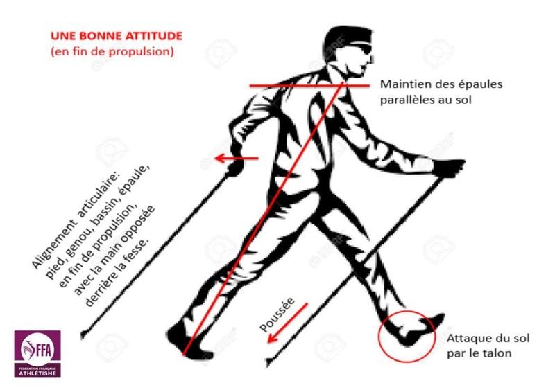 """La bonne """"image"""" de la  MN Gestue11"""
