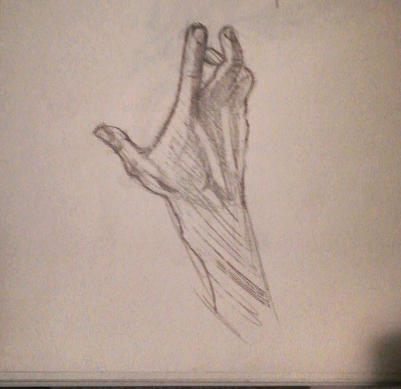Un peu d'anatomie  Img_2010