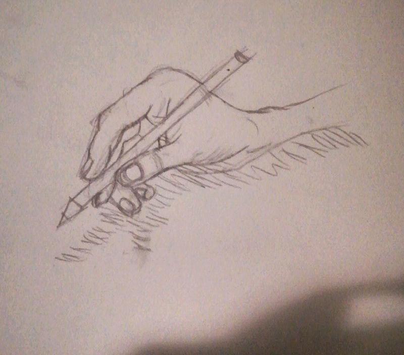 Un peu d'anatomie  Img_2014