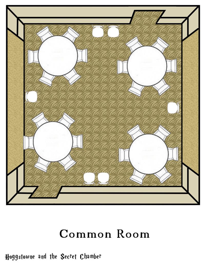Pics of the Common Room Floor_10