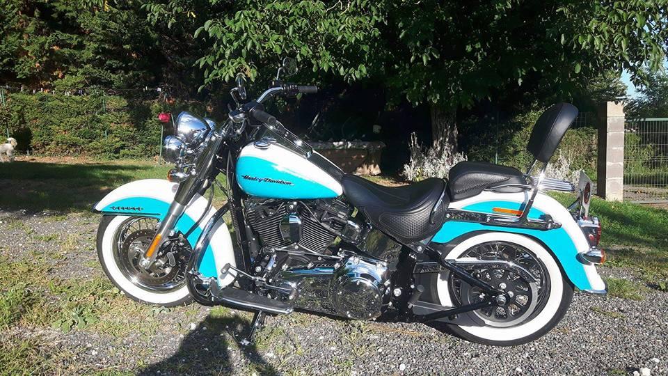 Combien de Softail sur le forum Passion-Harley - Page 14 20597412