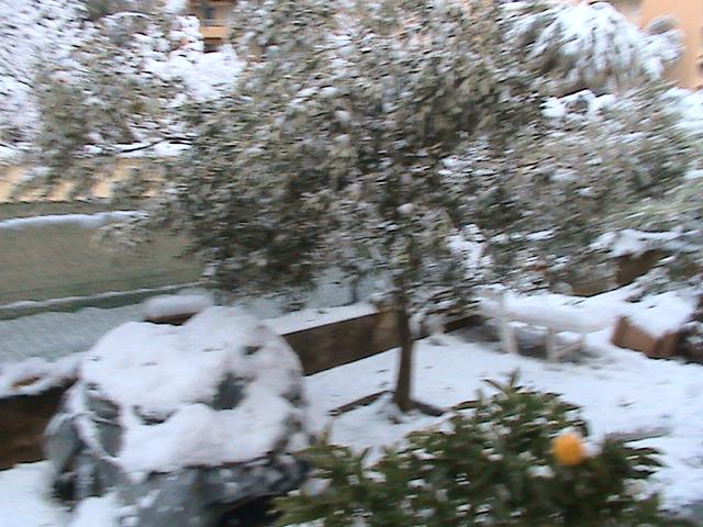 mon royaume sous la neige Dsc05423