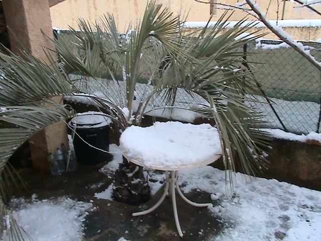 mon royaume sous la neige Dsc05424