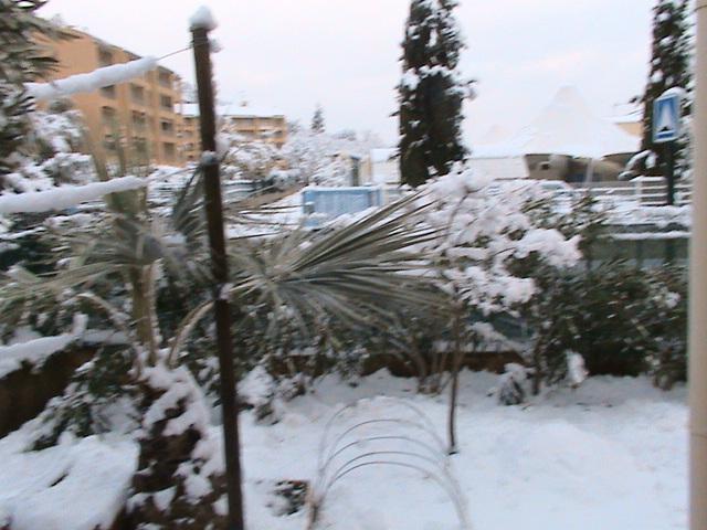 mon royaume sous la neige Dsc05425