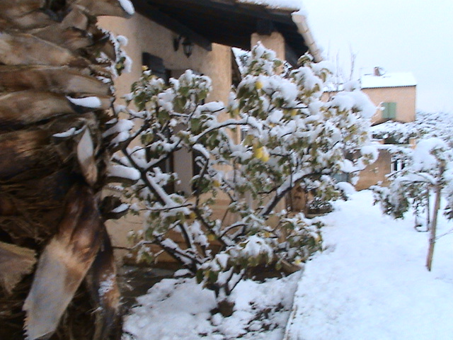 mon royaume sous la neige Dsc05429