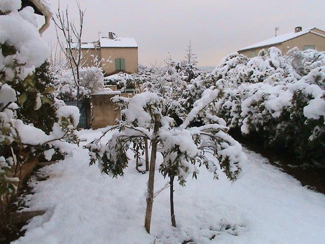 mon royaume sous la neige Dsc05430