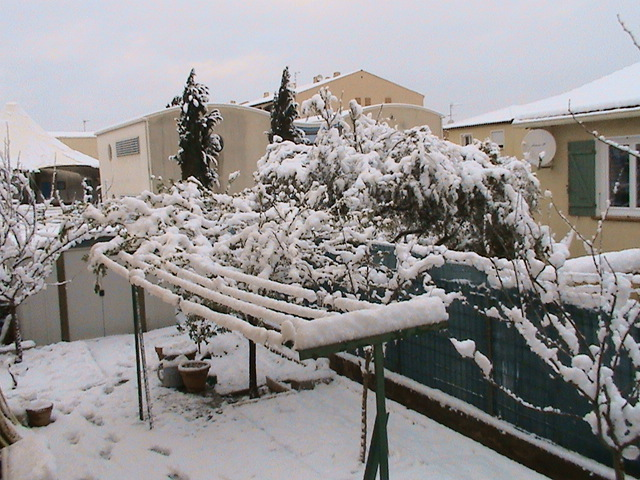 mon royaume sous la neige Dsc05432