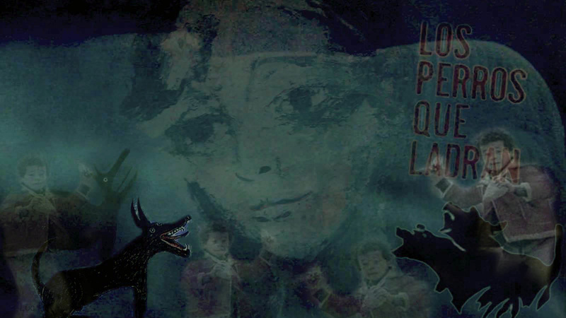 Vídeo - Probiña da tola 1517