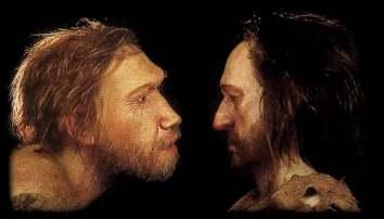 ¿Por qué se extinguieron los neandertales? Neande10