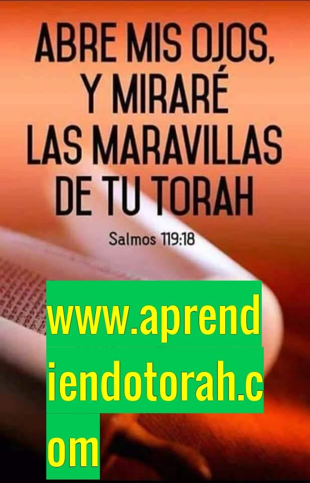 Shalom, yom tov - Página 14 Addtex10