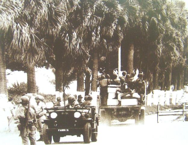 1ª Divisão de Infantaria do Exército Brasileiro  Eb_1510