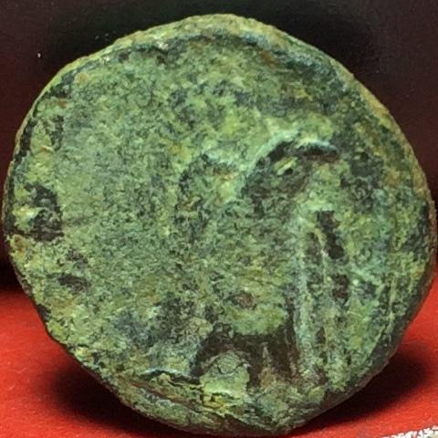 Radiado póstumo de Claudio II. CONSECRATIO. Águila Img_2130