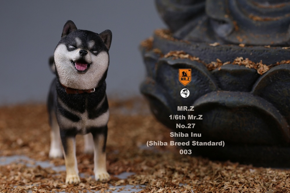 NEW PRODUCT: Mr.Z 1/6 Animal Model No. 27: Japanese shiba Inu X 3 10091211