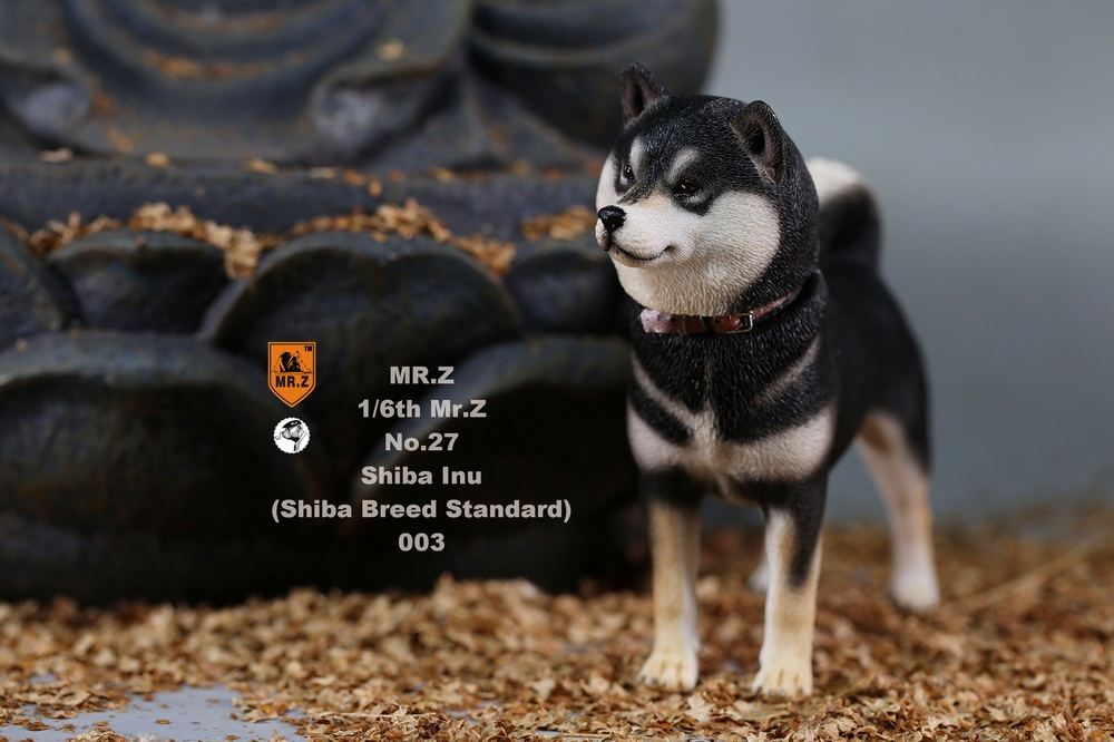 NEW PRODUCT: Mr.Z 1/6 Animal Model No. 27: Japanese shiba Inu X 3 10091512