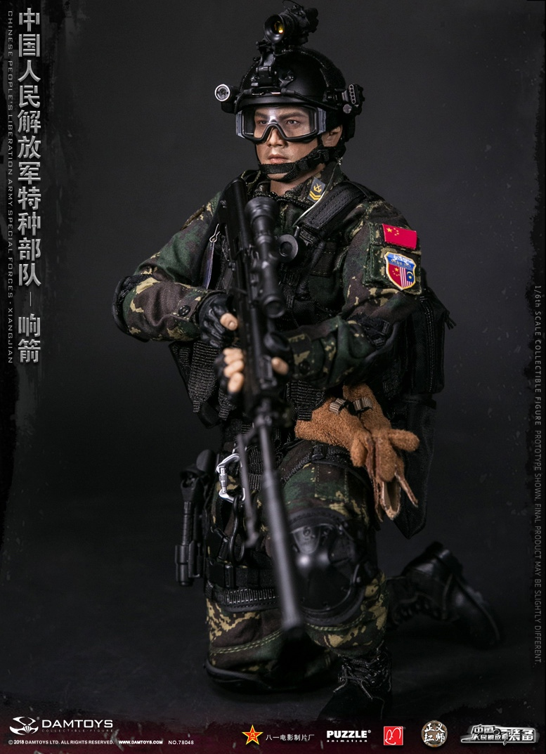 "Army - NEW PRODUCT: DAMTOYS New Products: 1/6 Special Forces of the People's Liberation Army of China - ""Singing Arrows"" Moving Figures (78048#) 17061610"