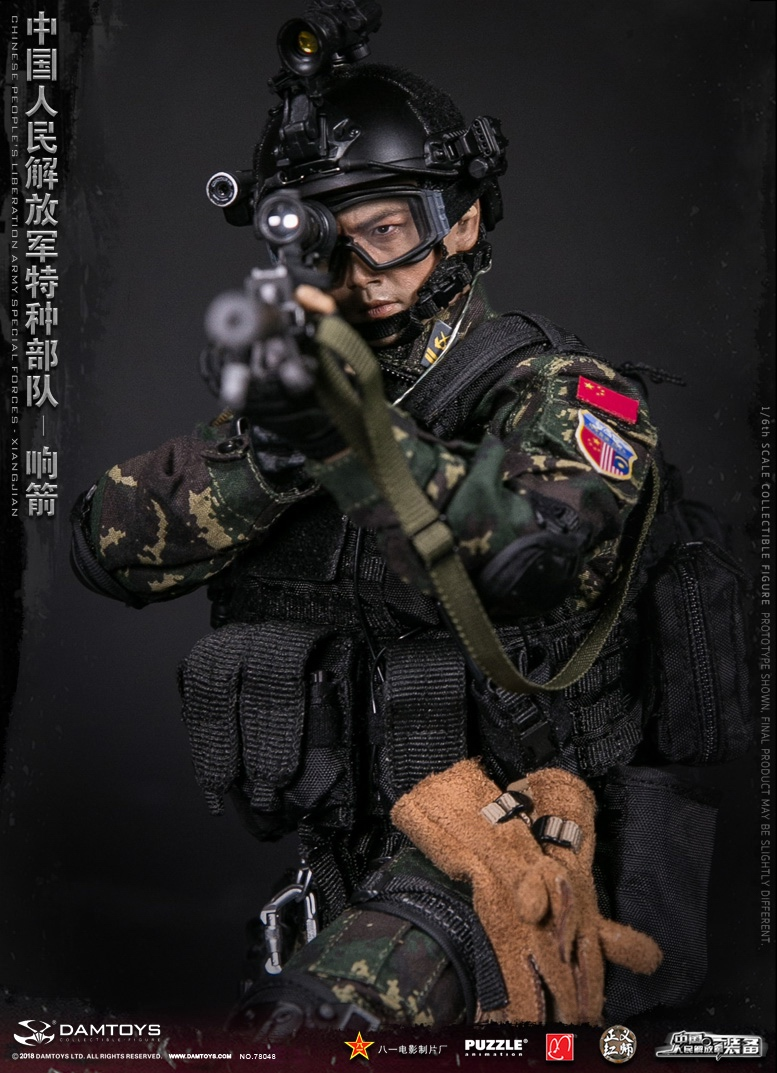 "Army - NEW PRODUCT: DAMTOYS New Products: 1/6 Special Forces of the People's Liberation Army of China - ""Singing Arrows"" Moving Figures (78048#) 17061711"