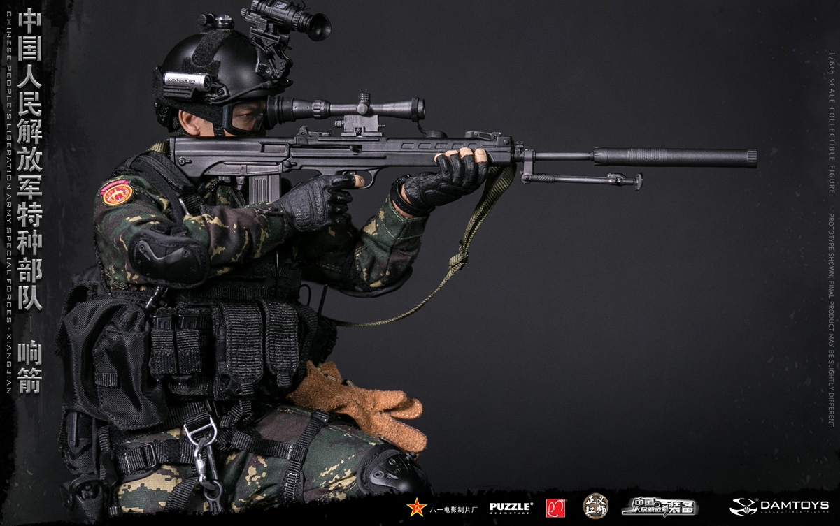 "Army - NEW PRODUCT: DAMTOYS New Products: 1/6 Special Forces of the People's Liberation Army of China - ""Singing Arrows"" Moving Figures (78048#) 17061910"