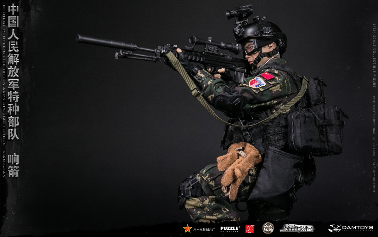 "Army - NEW PRODUCT: DAMTOYS New Products: 1/6 Special Forces of the People's Liberation Army of China - ""Singing Arrows"" Moving Figures (78048#) 17062010"