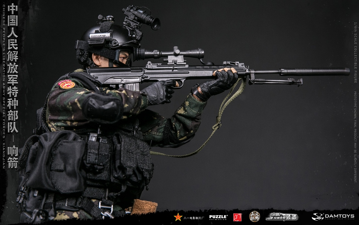 "Army - NEW PRODUCT: DAMTOYS New Products: 1/6 Special Forces of the People's Liberation Army of China - ""Singing Arrows"" Moving Figures (78048#) 17062011"