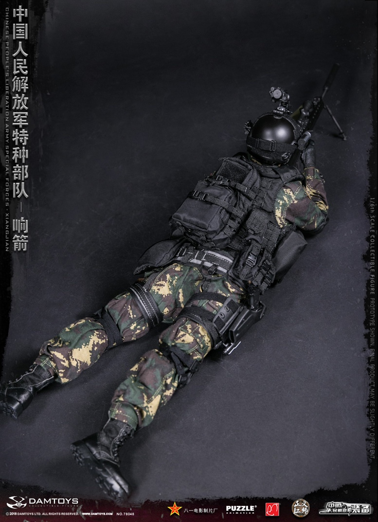 "Army - NEW PRODUCT: DAMTOYS New Products: 1/6 Special Forces of the People's Liberation Army of China - ""Singing Arrows"" Moving Figures (78048#) 17062310"