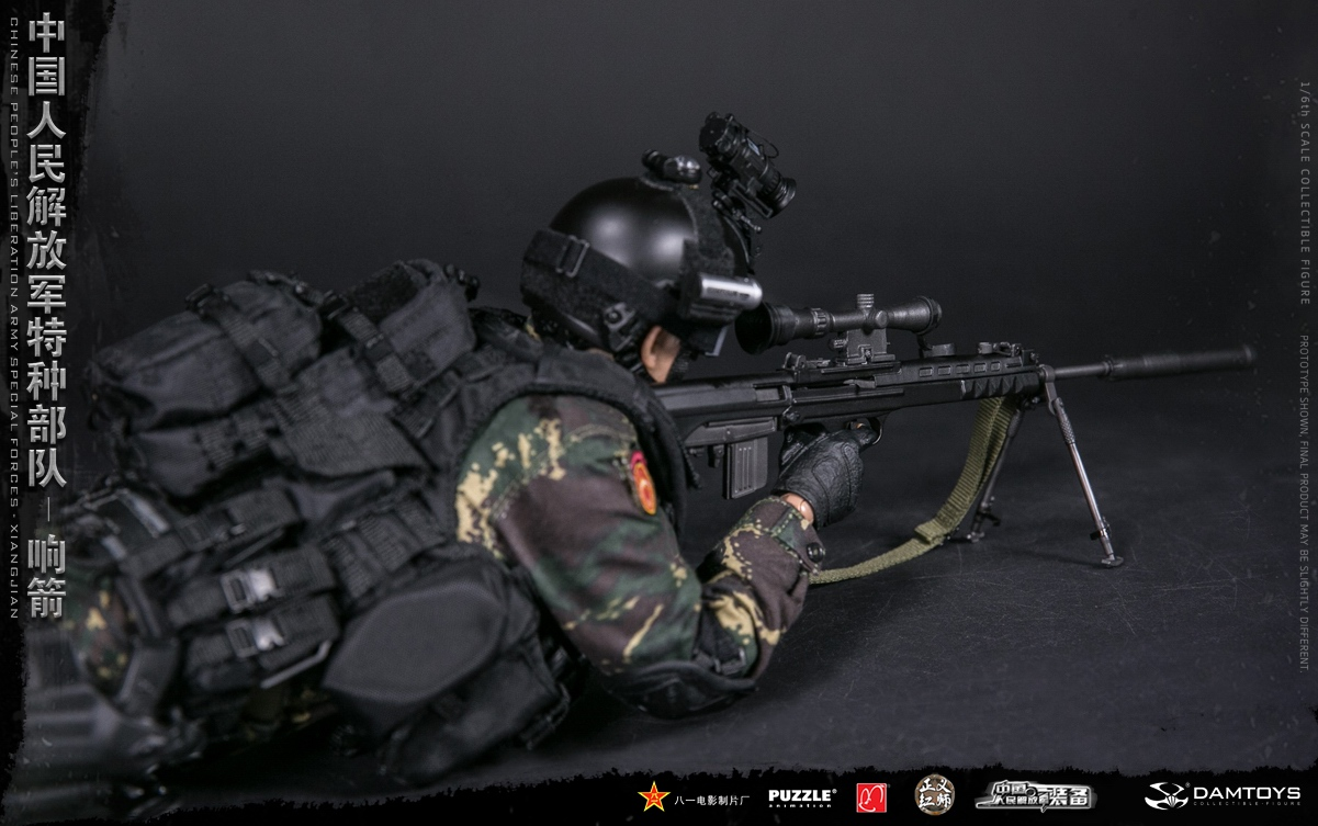 "Army - NEW PRODUCT: DAMTOYS New Products: 1/6 Special Forces of the People's Liberation Army of China - ""Singing Arrows"" Moving Figures (78048#) 17062410"