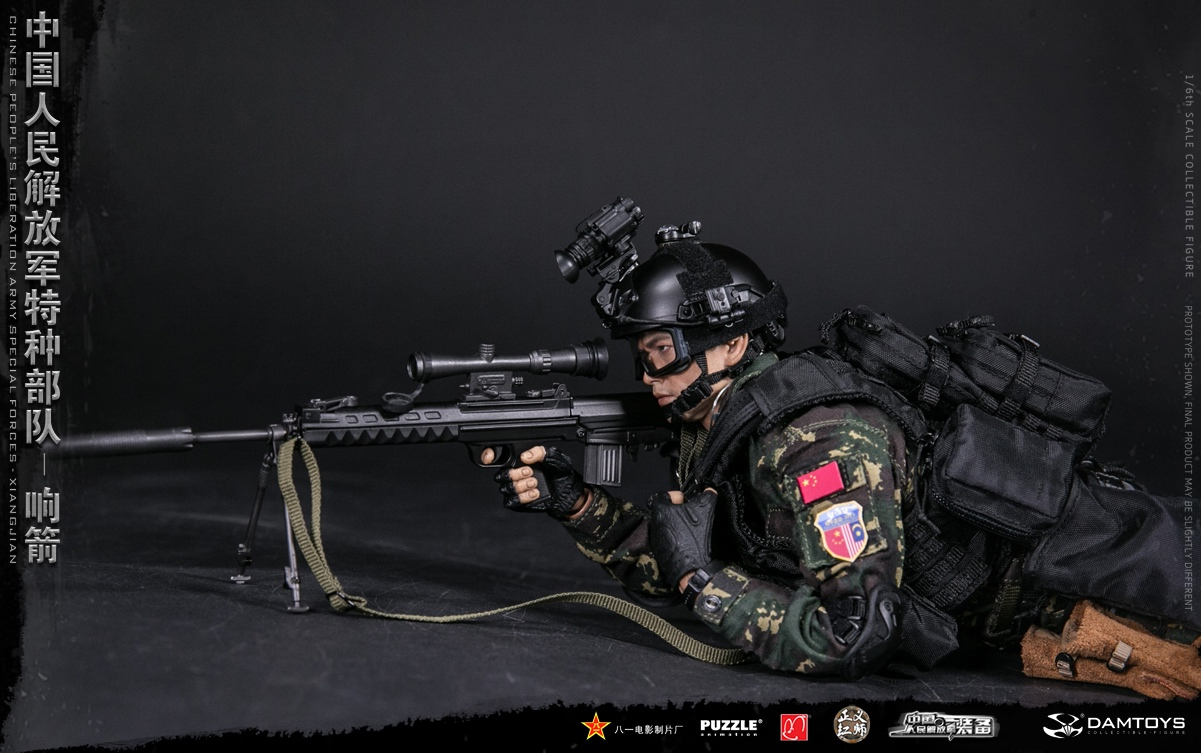 "Army - NEW PRODUCT: DAMTOYS New Products: 1/6 Special Forces of the People's Liberation Army of China - ""Singing Arrows"" Moving Figures (78048#) 17062411"