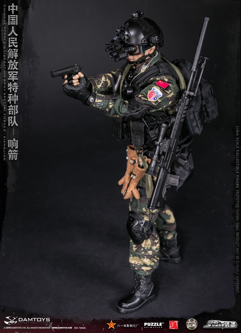 "Army - NEW PRODUCT: DAMTOYS New Products: 1/6 Special Forces of the People's Liberation Army of China - ""Singing Arrows"" Moving Figures (78048#) 17093810"