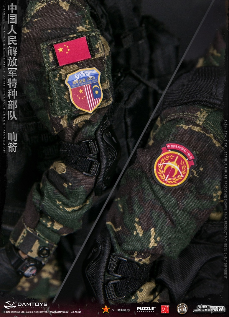 "Army - NEW PRODUCT: DAMTOYS New Products: 1/6 Special Forces of the People's Liberation Army of China - ""Singing Arrows"" Moving Figures (78048#) 17094110"