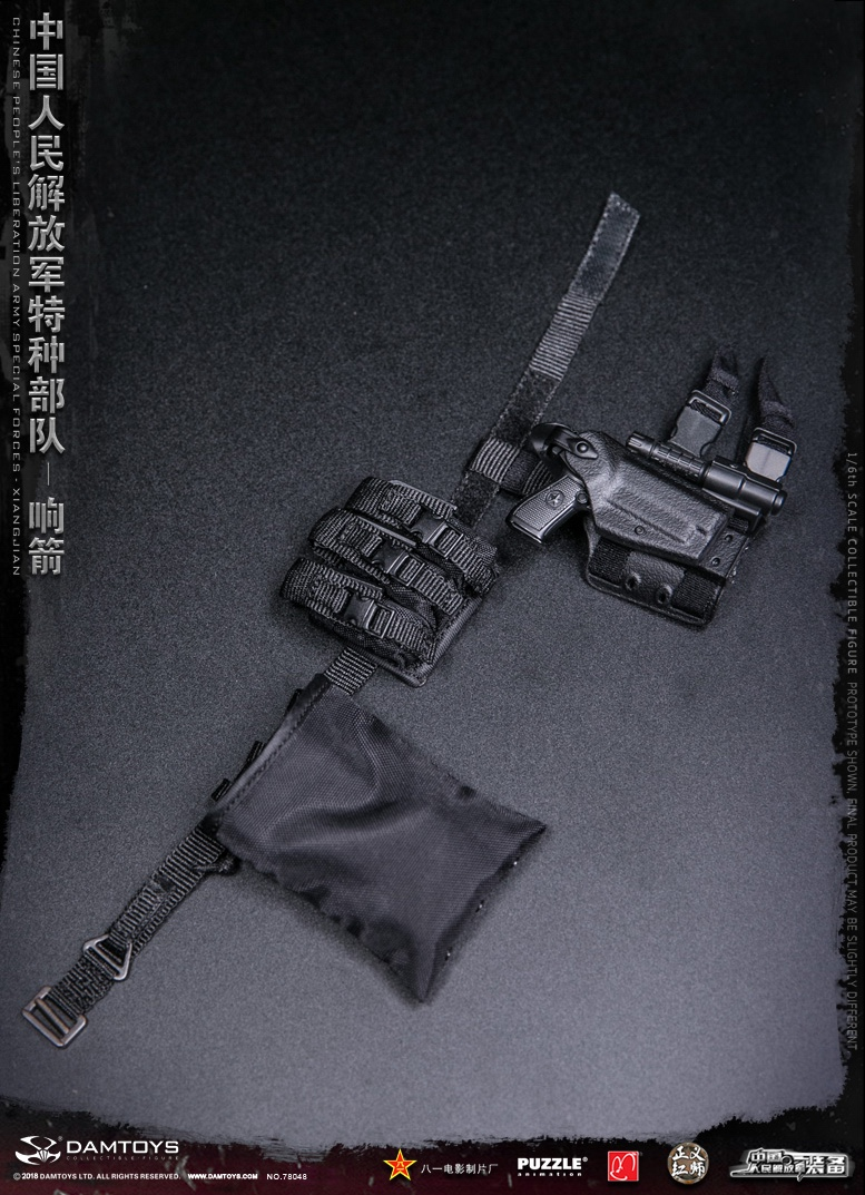 "Army - NEW PRODUCT: DAMTOYS New Products: 1/6 Special Forces of the People's Liberation Army of China - ""Singing Arrows"" Moving Figures (78048#) 17095610"