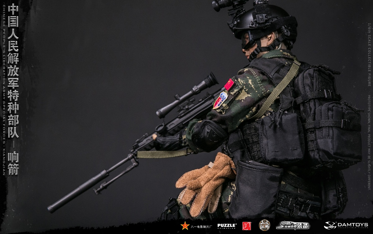 "Army - NEW PRODUCT: DAMTOYS New Products: 1/6 Special Forces of the People's Liberation Army of China - ""Singing Arrows"" Moving Figures (78048#) 447"