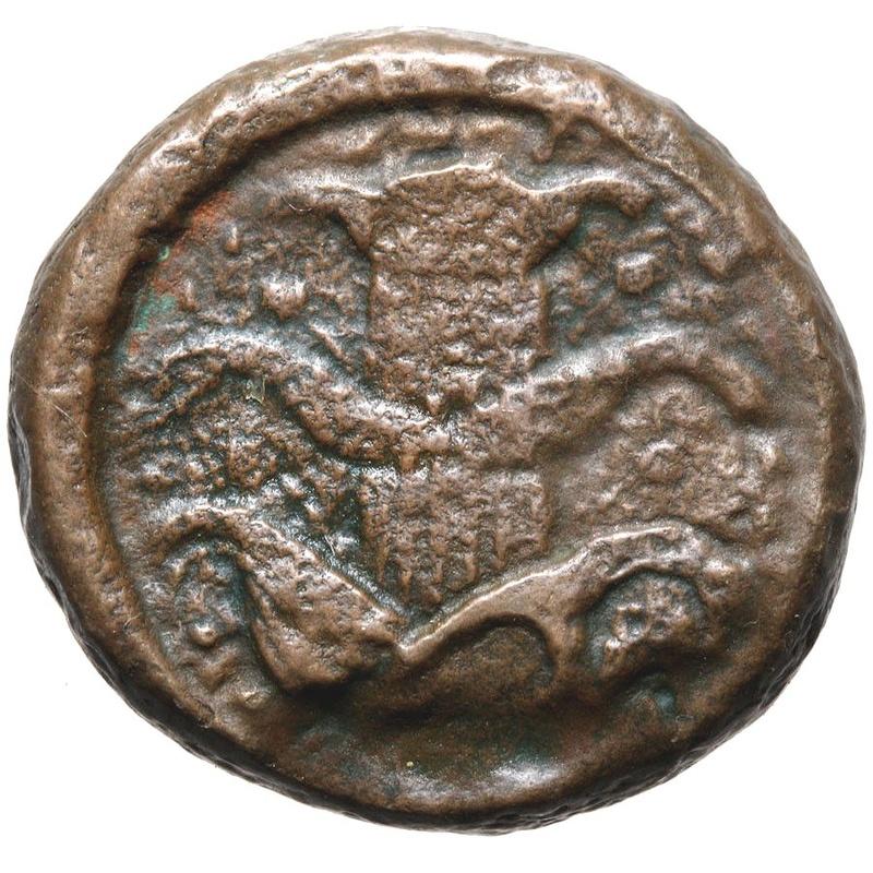 AE 22. Cirenaica. Cirene. Koinon  de Cirene, ca. 250-246 a.C. Planta de Silphium 41911