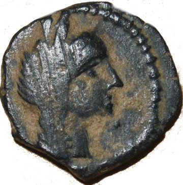 AE14 de Aretas IV a nombre de Phasael 43110