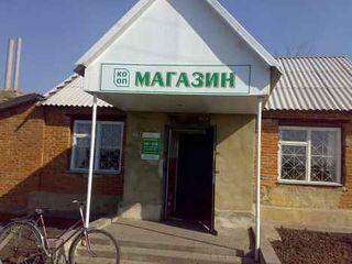 Какой магазин открыть в регионе? Magaz10