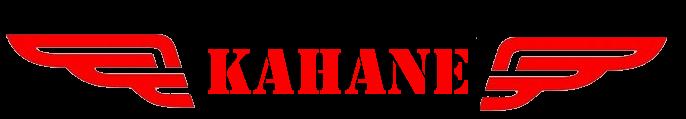 Affaire Kahane Logo-y18
